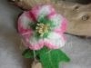 Christmas rose child
